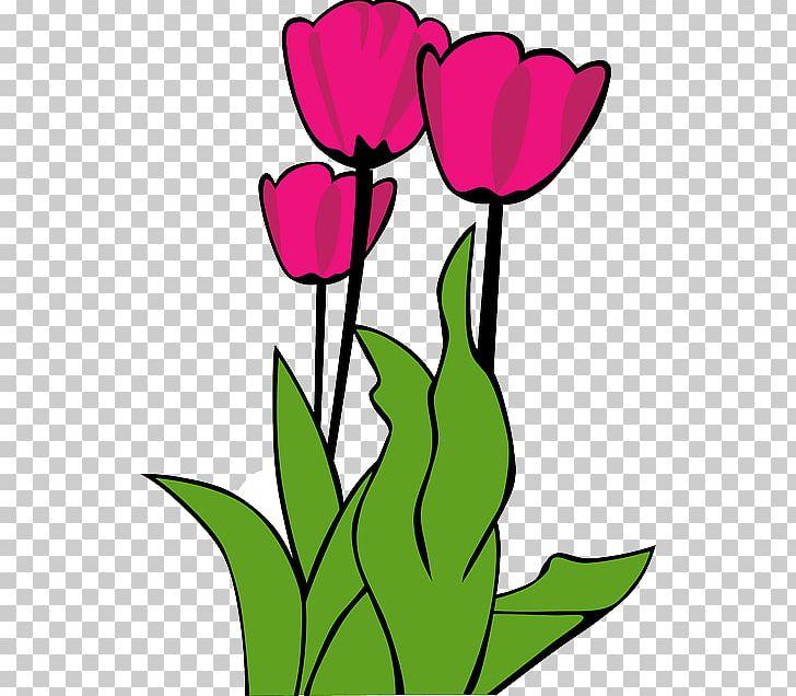 Tulip PNG, Clipart, Art, Artwork, Bunga Raya, Cartoon, Clip Art Free.