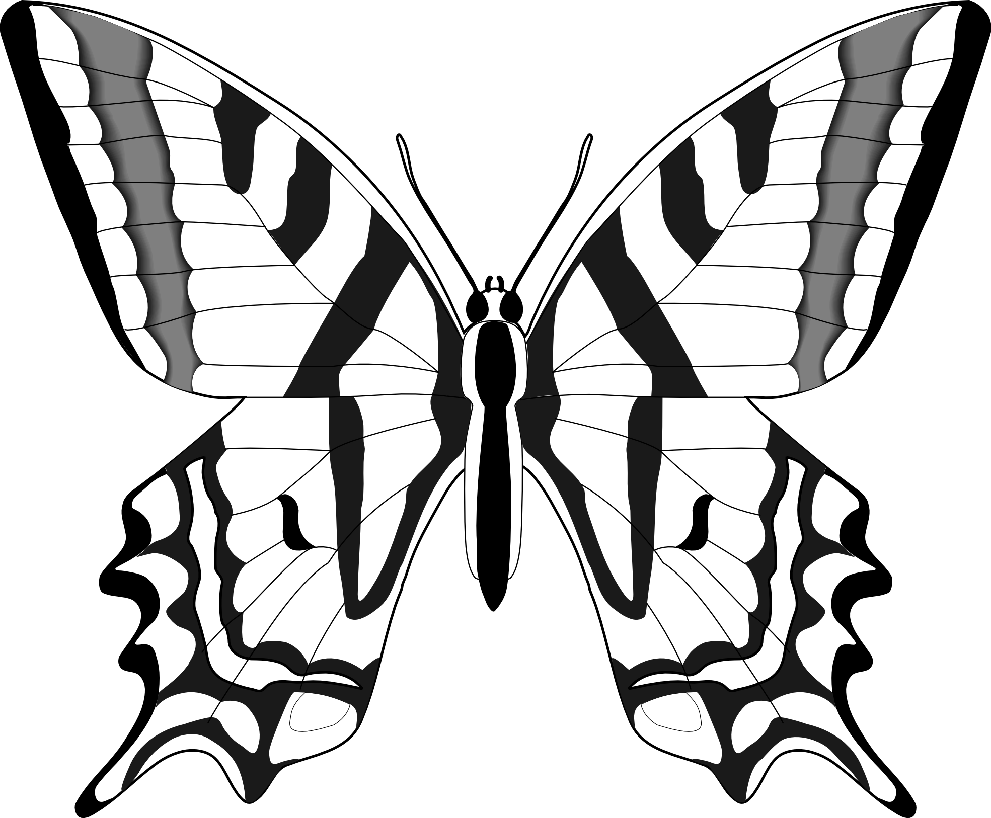 Free Butterfly Images Black And White, Download Free Clip.