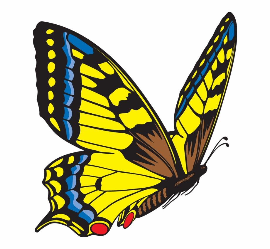 Free Butterfly Clipart Butterflies Cute Borders Vectors.