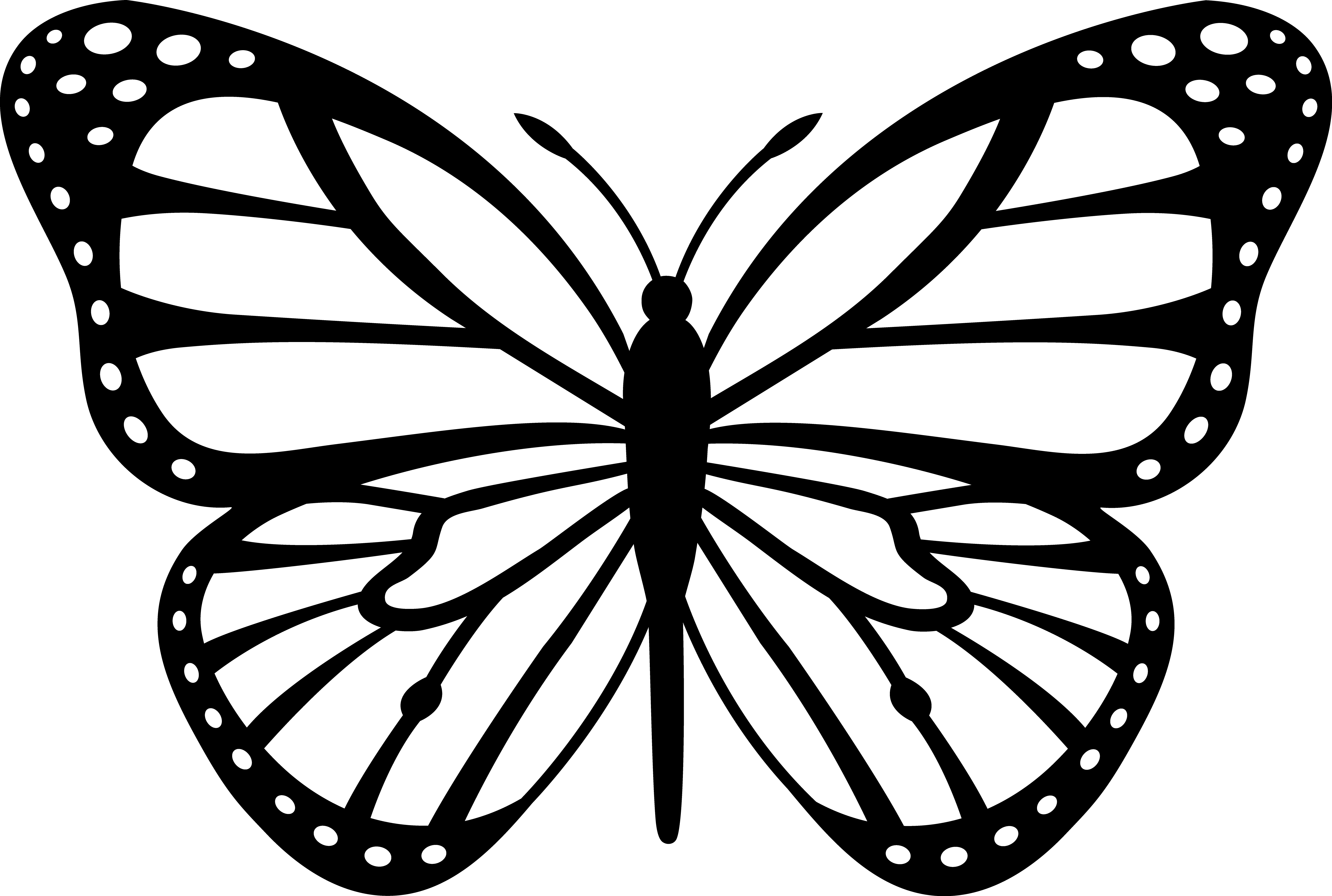 Butterfly Wings Cliparts.