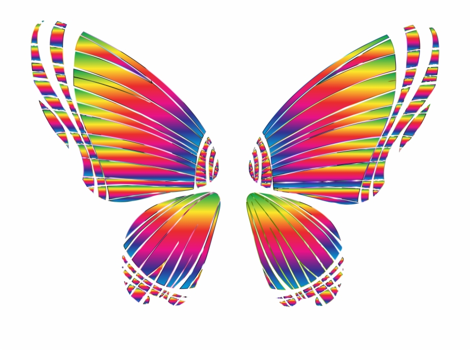 Rgb Butterfly Silhouette 10 8 No Background Bclipart.