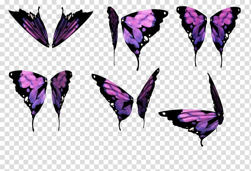 Daz Butterfly Wings, six black.