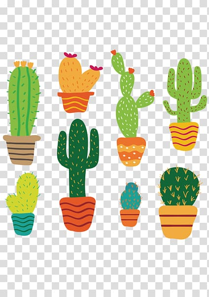 Cactus illustrations, Cactaceae Succulent plant , Cartoon.