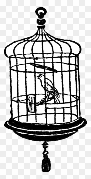 Download Free png Bird Cage Transparent Clipart Cage In Black And.
