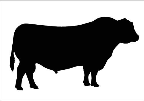 Bull Silhouette Vector Clipart Quality Download Silhouette.