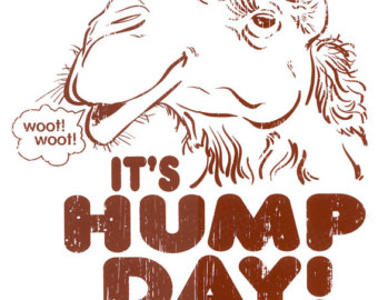Hump day camel clipart » Clipart Station.