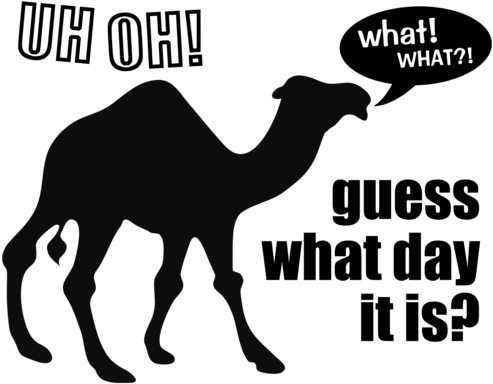 Vector Transparent Library Clipart Camel Hump Day.