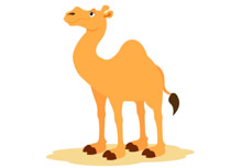 Free Camel Clipart.