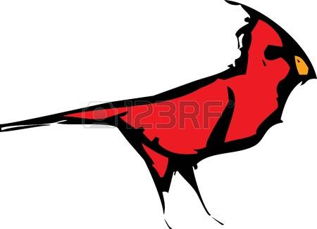 1,048 Cardinal Bird Cliparts, Stock Vector And Royalty Free.