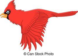 Cardinal bird Vector Clipart EPS Images. 441 Cardinal bird clip.