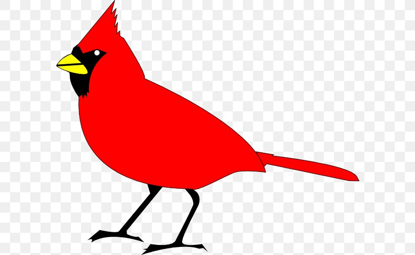 Northern Cardinal St. Louis Cardinals Clip Art, PNG.