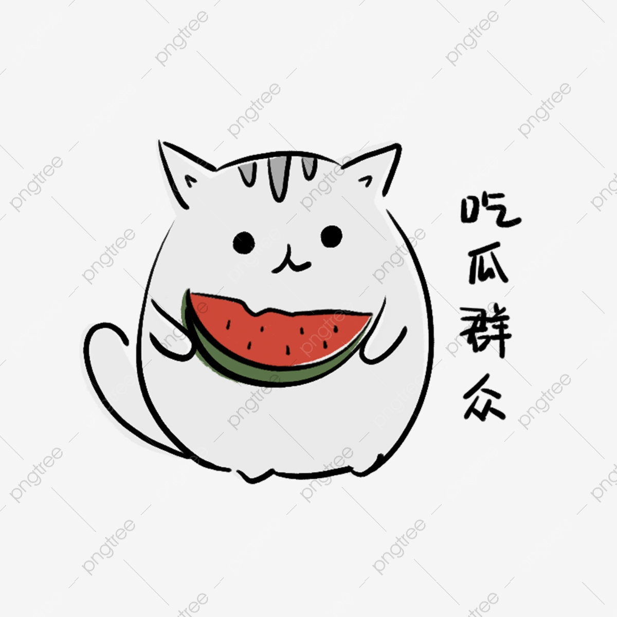 Cat Eating Melons Watermelon Short English, Hand Painted, Cartoon.