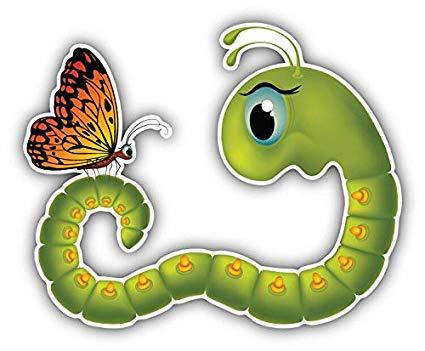 Amazon.com: JJH Inc Magnet Goggle Eyed Caterpillar Butterfly Cartoon.