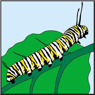 Clip Art: Butterfly: Monarch Caterpillar Color I abcteach.com.