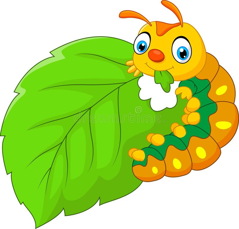 Caterpillar Leaf Stock Illustrations.
