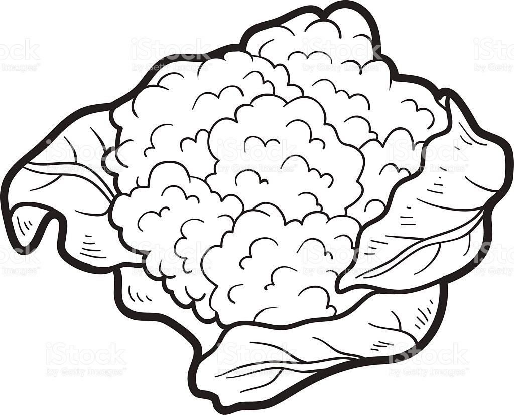 Cauliflower Clipart Black And White 1.