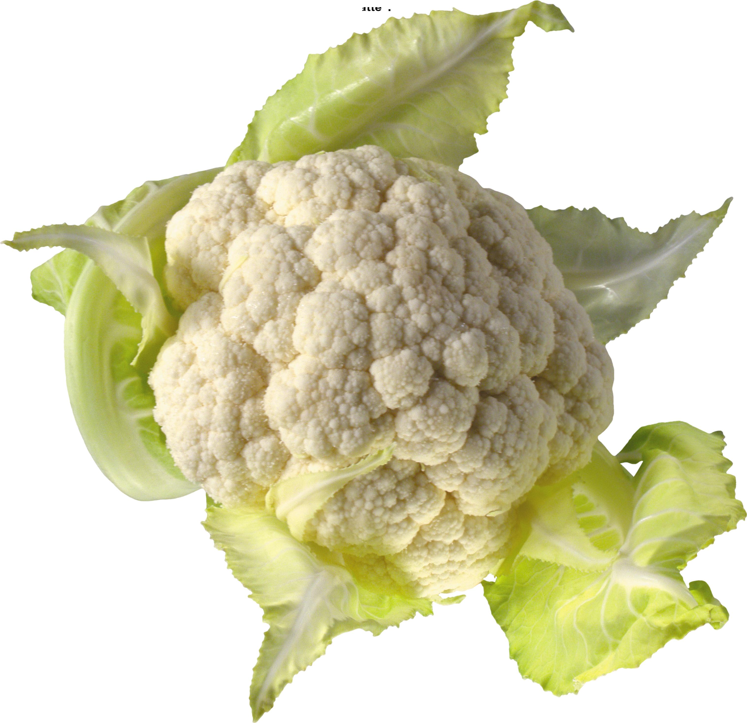 Cauliflower Clipart PNG.
