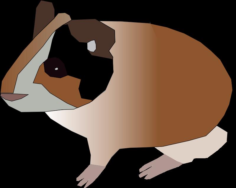 Free Clipart: Guinea pig.