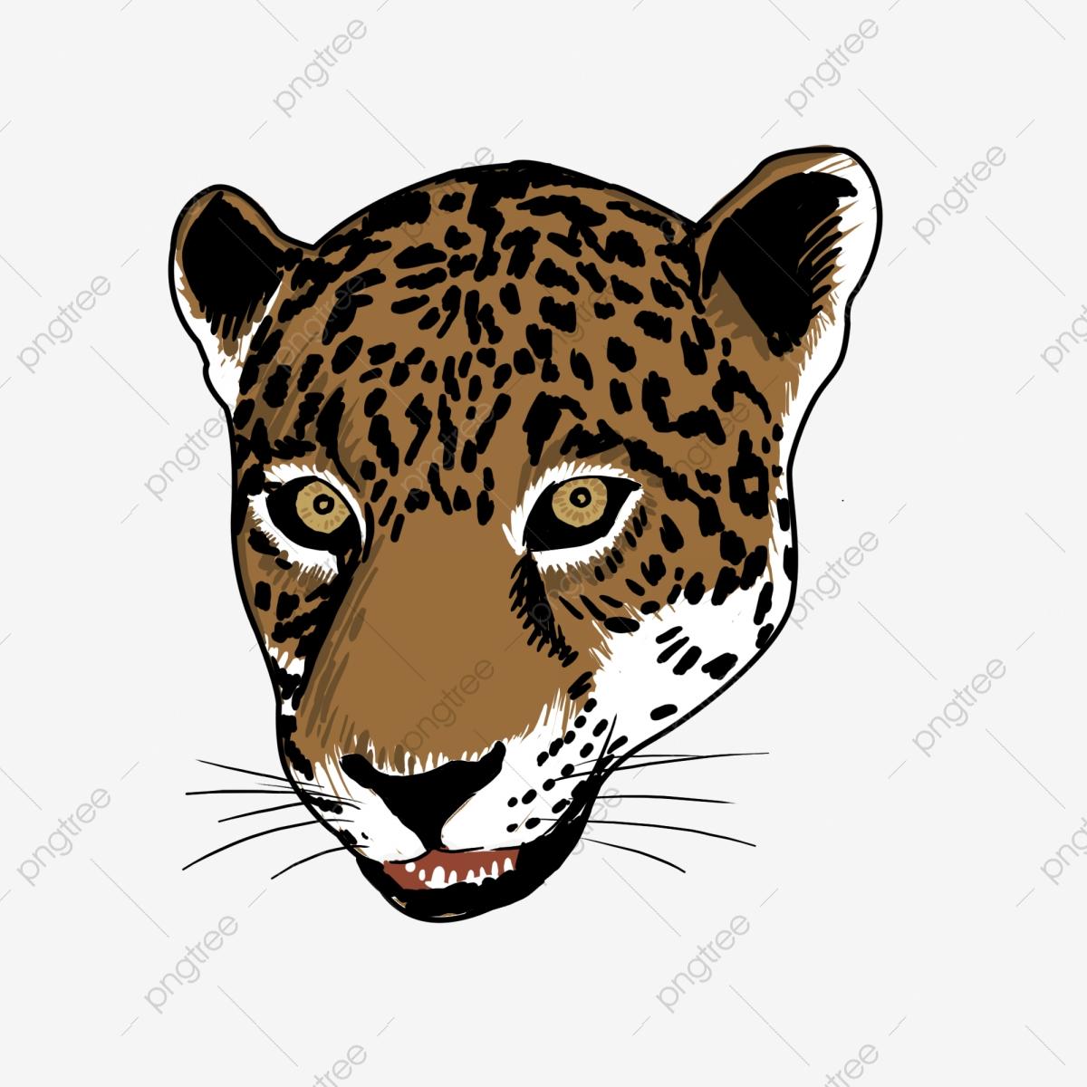 Black And White Cheetah, Cheetah Clipart, Cheetah, Leopard PNG.