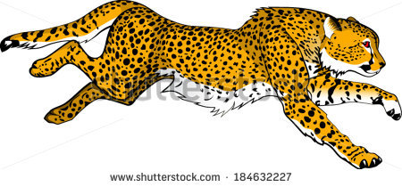 Showing post & media for Cheetah running cartoon.