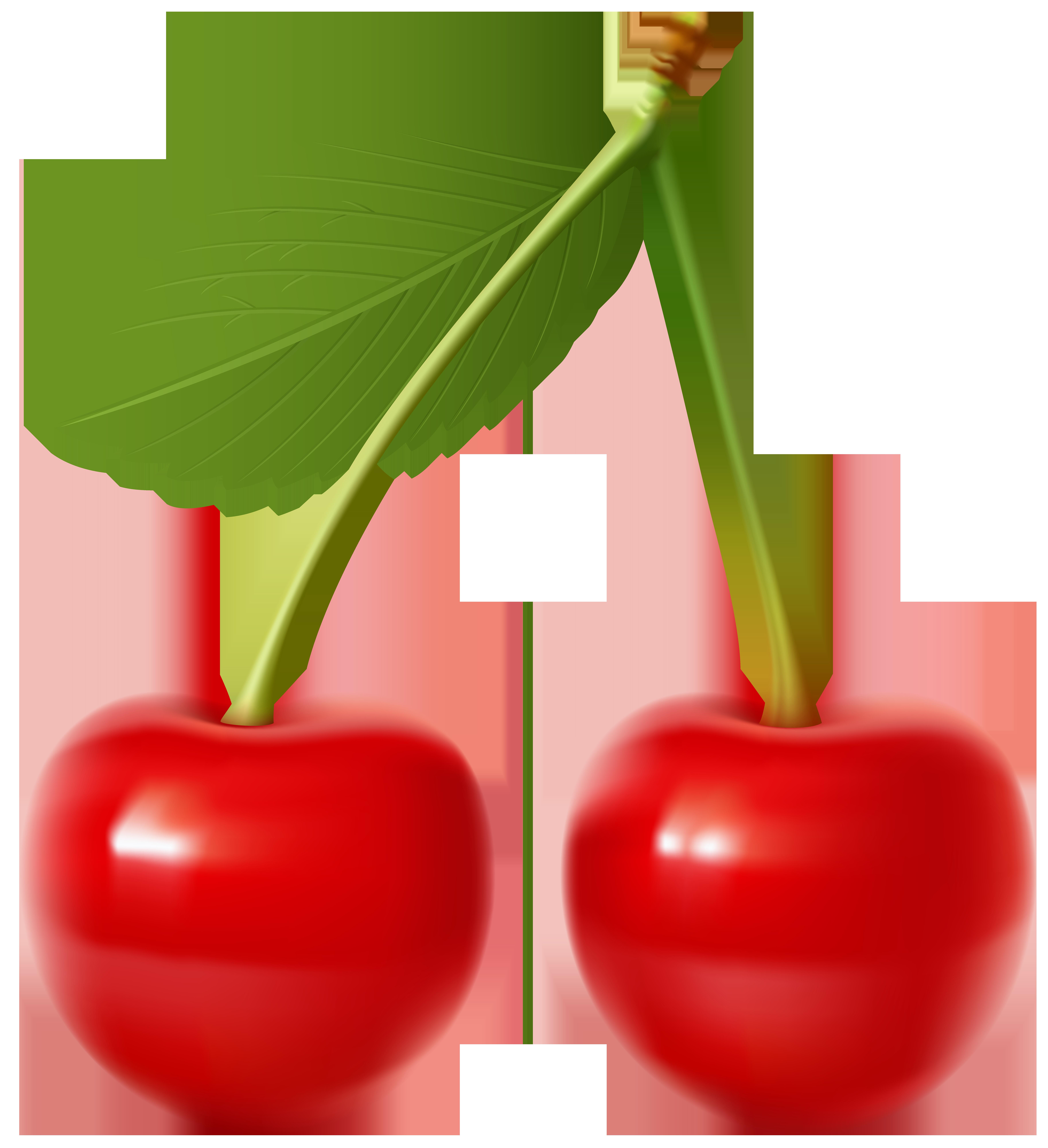 Cherries Transparent Clip Art Image.