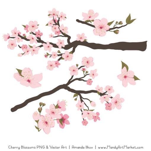 Free Cherry Blossom Clipart Vectors.