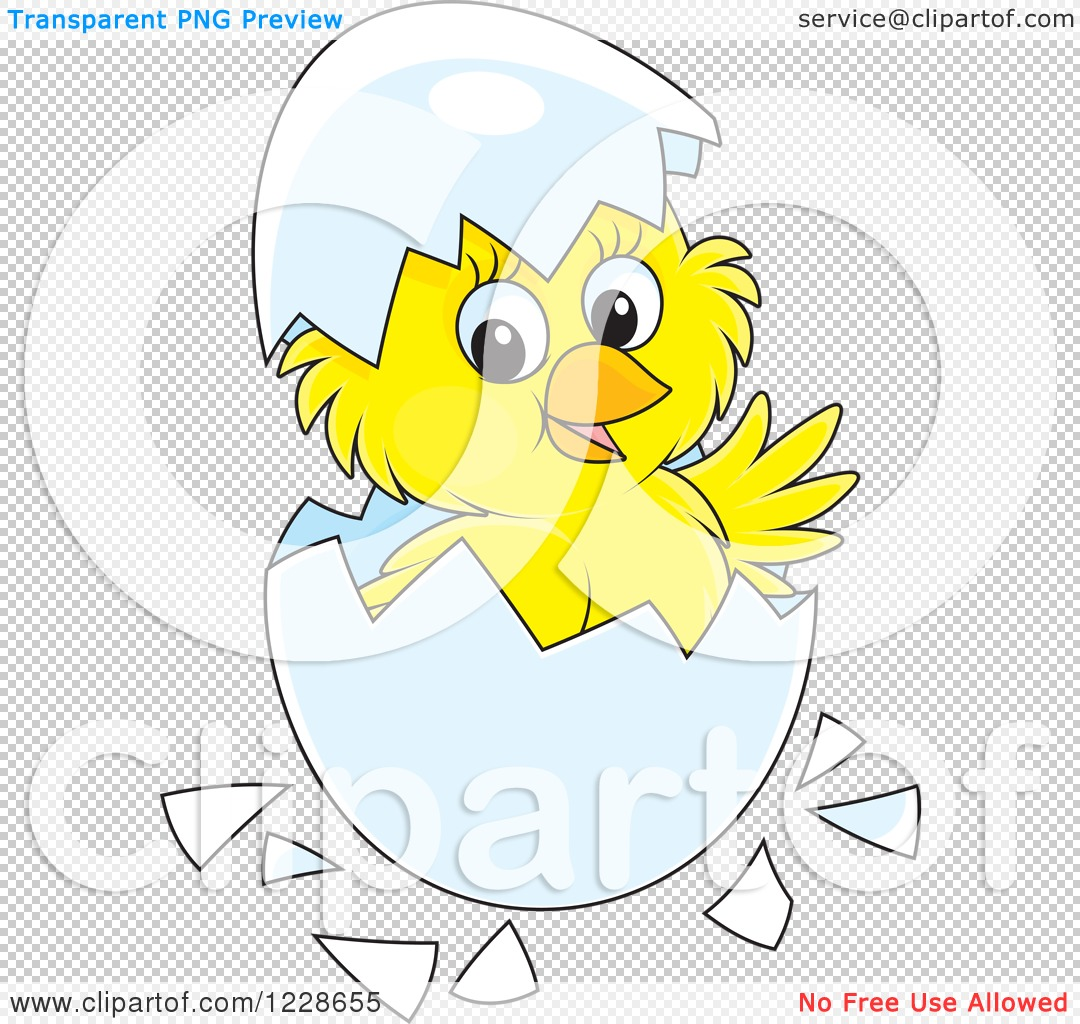 Clipart of a Cute Yellow Chick Hatching from an Egg.