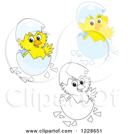 Clipart of Outlined and Colored Cute Chicks Hatching from Eggs.