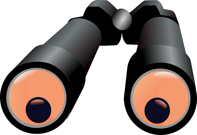 Free vector graphic: Binoculars, Magnify, See, Lenses.