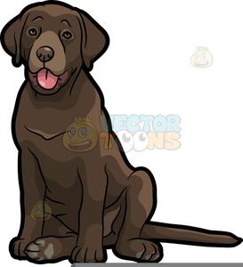 Chocolate Labrador Clipart.