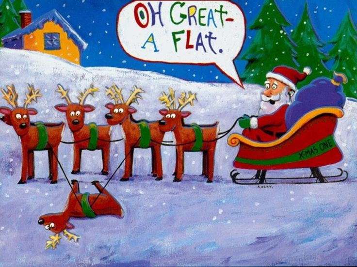 1000+ Images About Christmas Humor On Pinterest.
