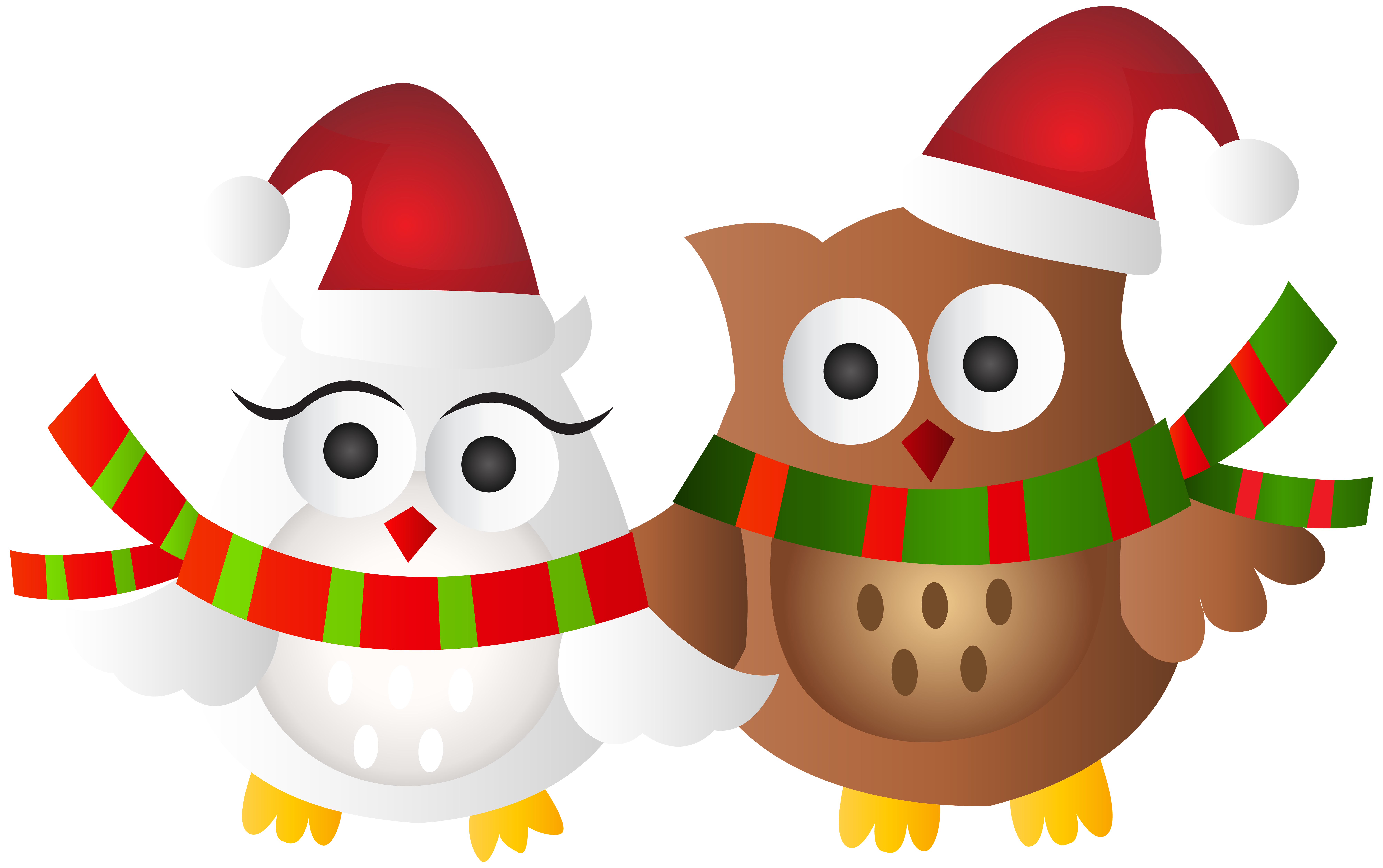 Christmas Owls Transparent Clip Art Image.