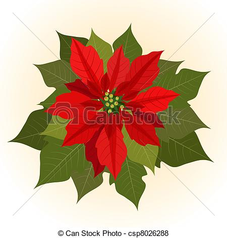 Poinsettia Illustrations and Clipart. 3,655 Poinsettia royalty.