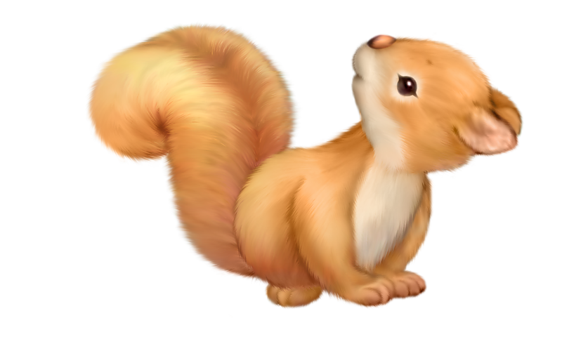Cute Squirrel Free Clipart.