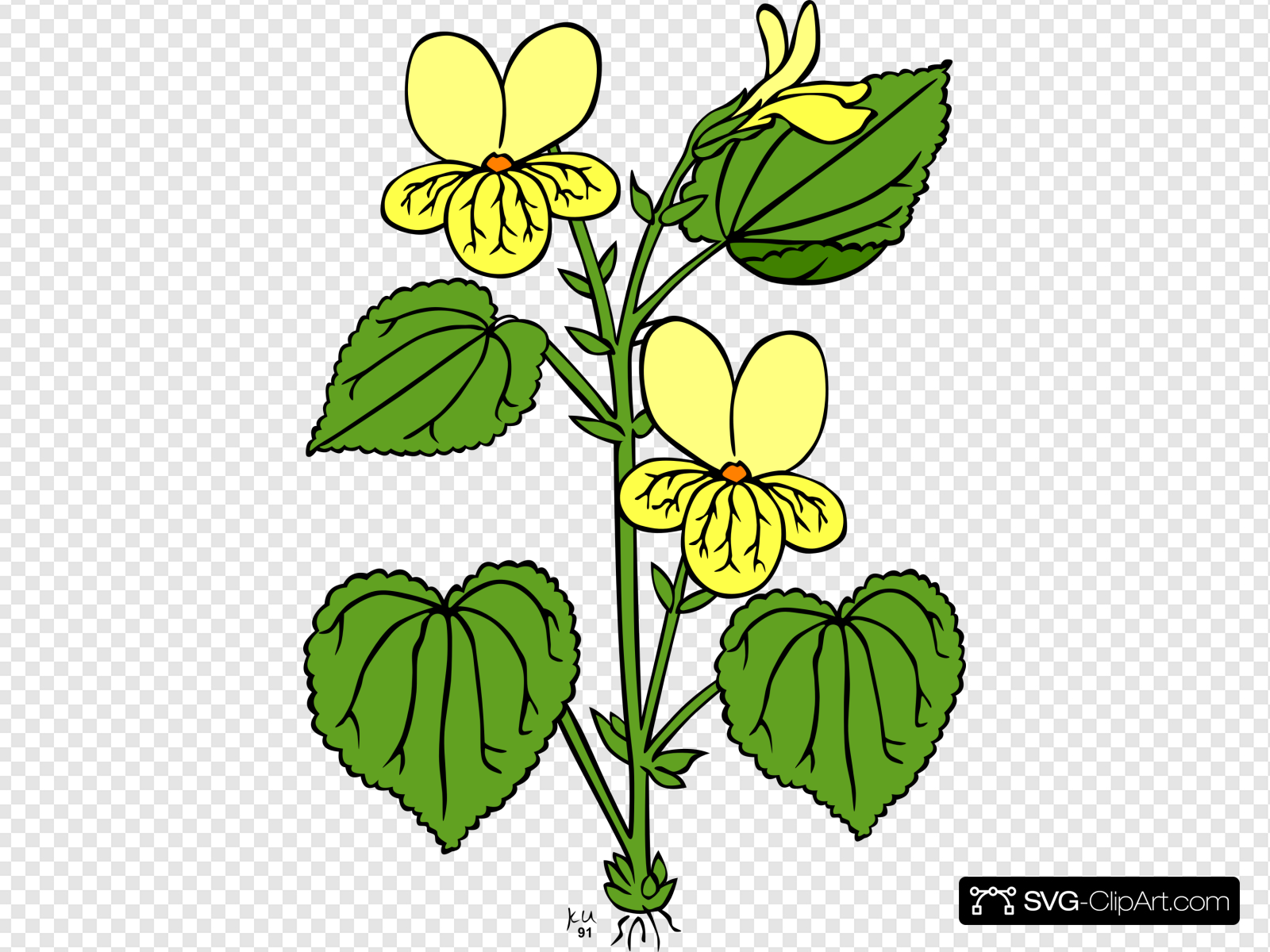 Floral Plant With Green Leaves Clip art, Icon and SVG.