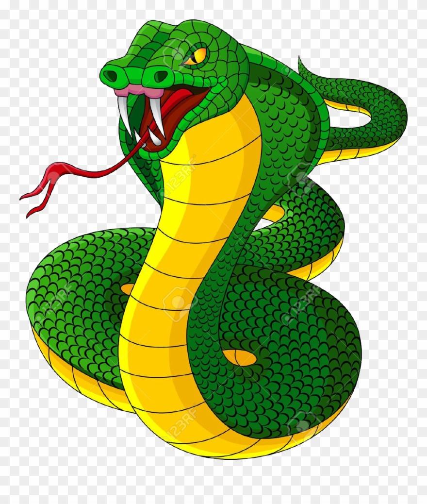 Cobra Snakes Clipart.