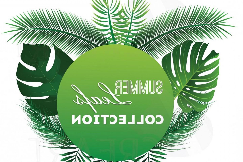 Summer Leaf Clip Art Pack Palm Leaf Collection Eps Png Jpg Pdf Svg.