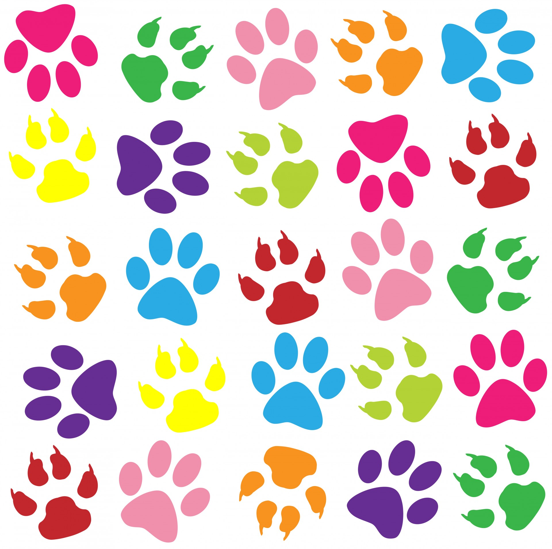 Paw Prints Colorful Background Free Stock Photo.