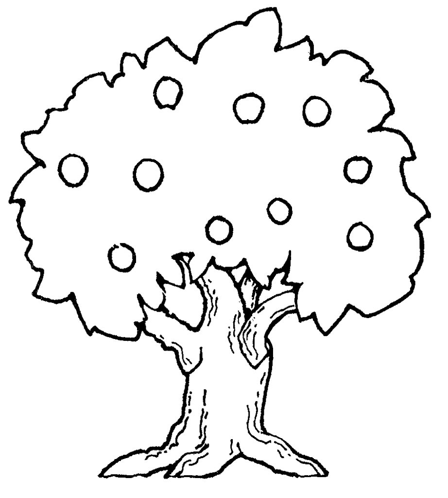 Apple Trees Drawing ClipArt Best with Cute Tree With Leaves And.