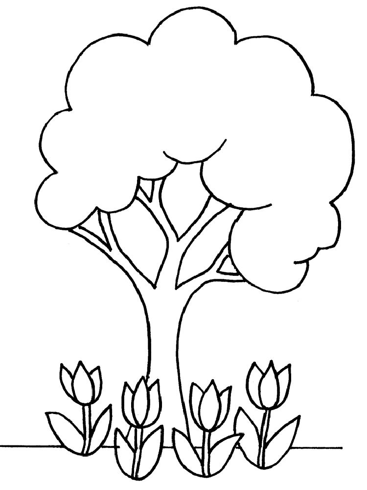 Printable Pictures Of Trees.