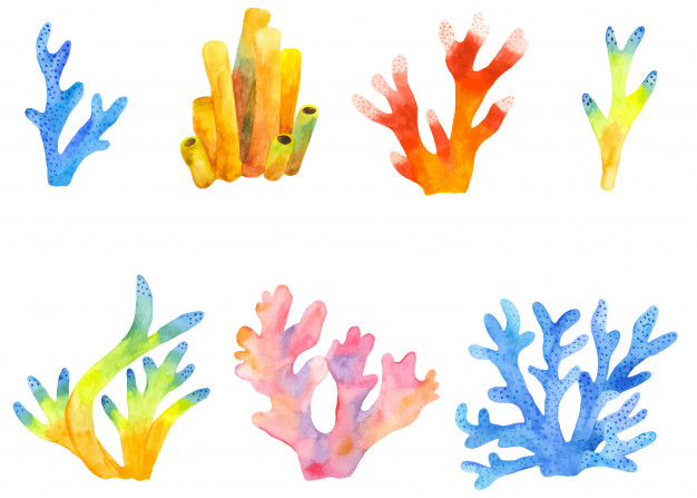 Watercolor set of coral reefs clipart Vector.