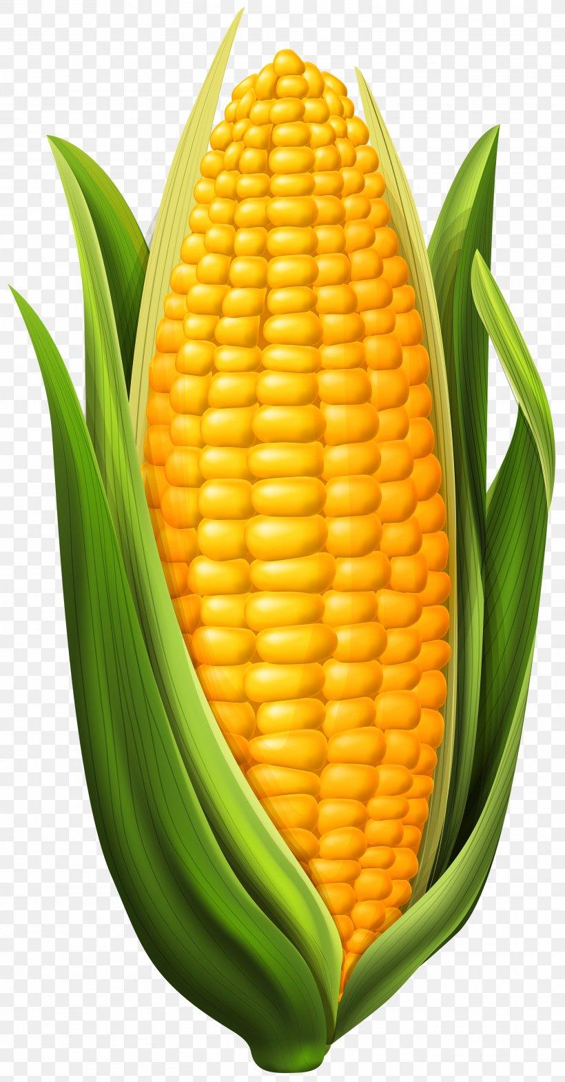 Candy Corn Corn Dog Corn On The Cob Maize Clip Art, PNG.