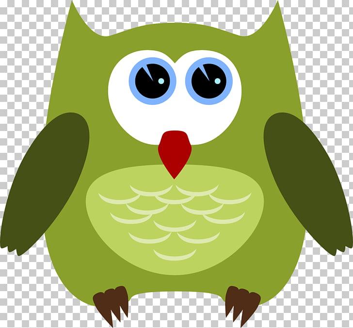 Owl Bird Drawing , coruja PNG clipart.