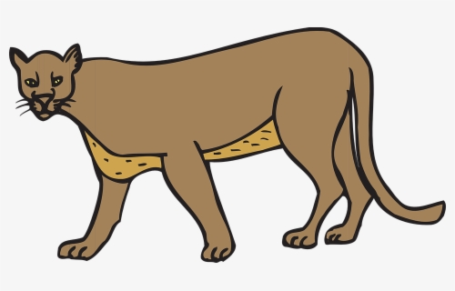 Free Cougar Clip Art with No Background.