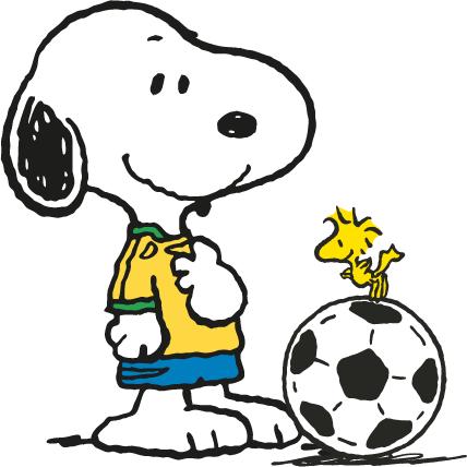 Coupe du monde 2014, Bon amusement à tous!!!!!.