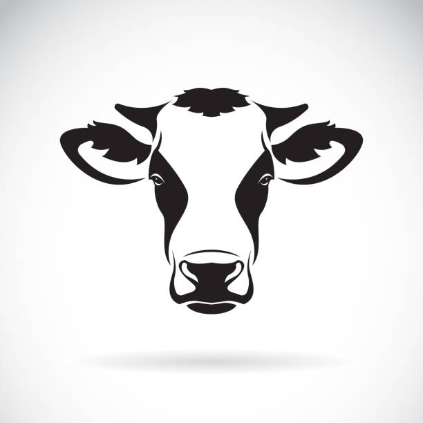 Cow face clipart 4 » Clipart Station.