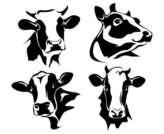 Cow, Cow head, Dairy cow, Milk cow, Silhouette,SVG,Graphics.