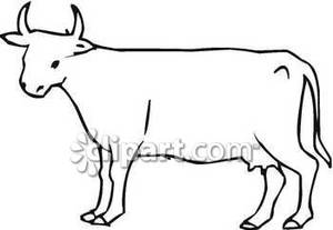 Cow Outline.