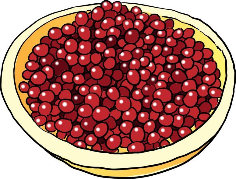 Free Cranberry Cliparts, Download Free Clip Art, Free Clip.