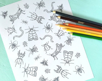 Bug coloring books.
